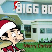 Bigg Toon | Week #5